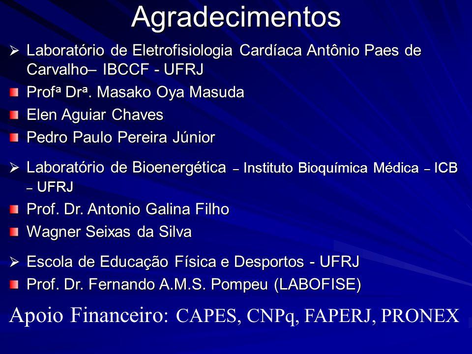 Agradecimentos Apoio Financeiro: CAPES, CNPq, FAPERJ, PRONEX