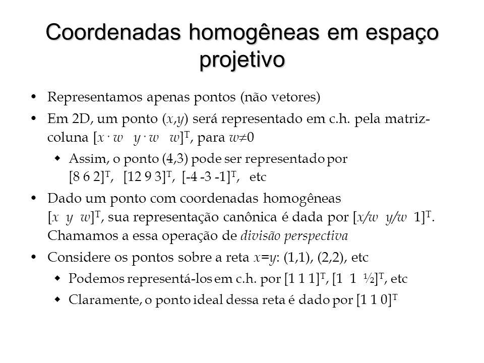 Coordenadas homogêneas em espaço projetivo