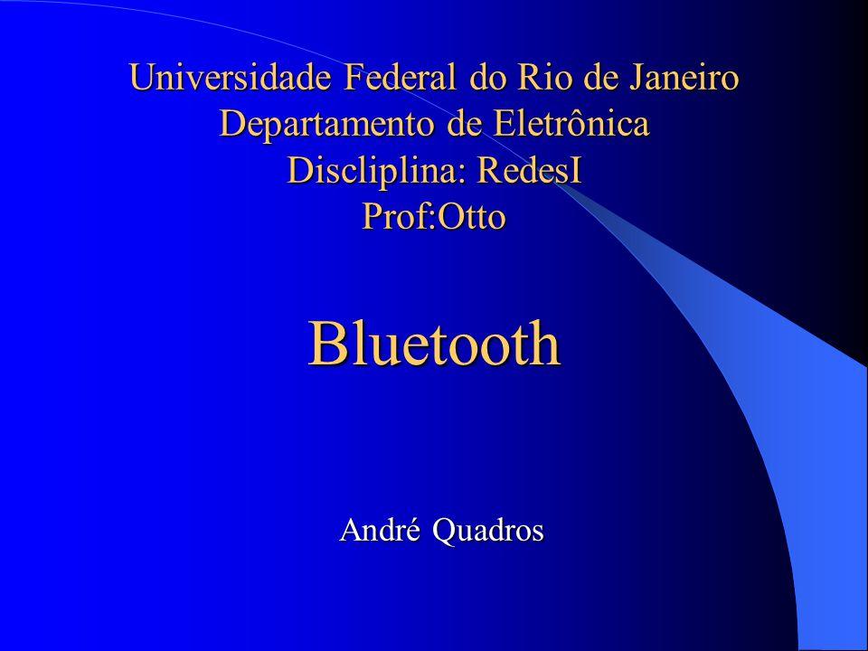 Universidade Federal do Rio de Janeiro Departamento de Eletrônica Discliplina: RedesI Prof:Otto