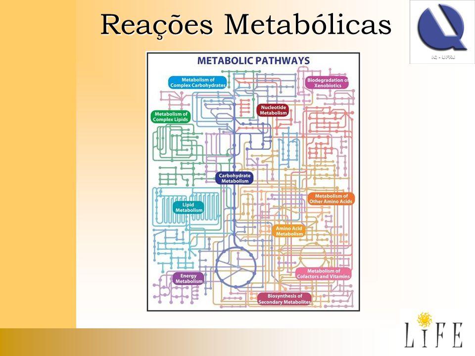 Reações Metabólicas