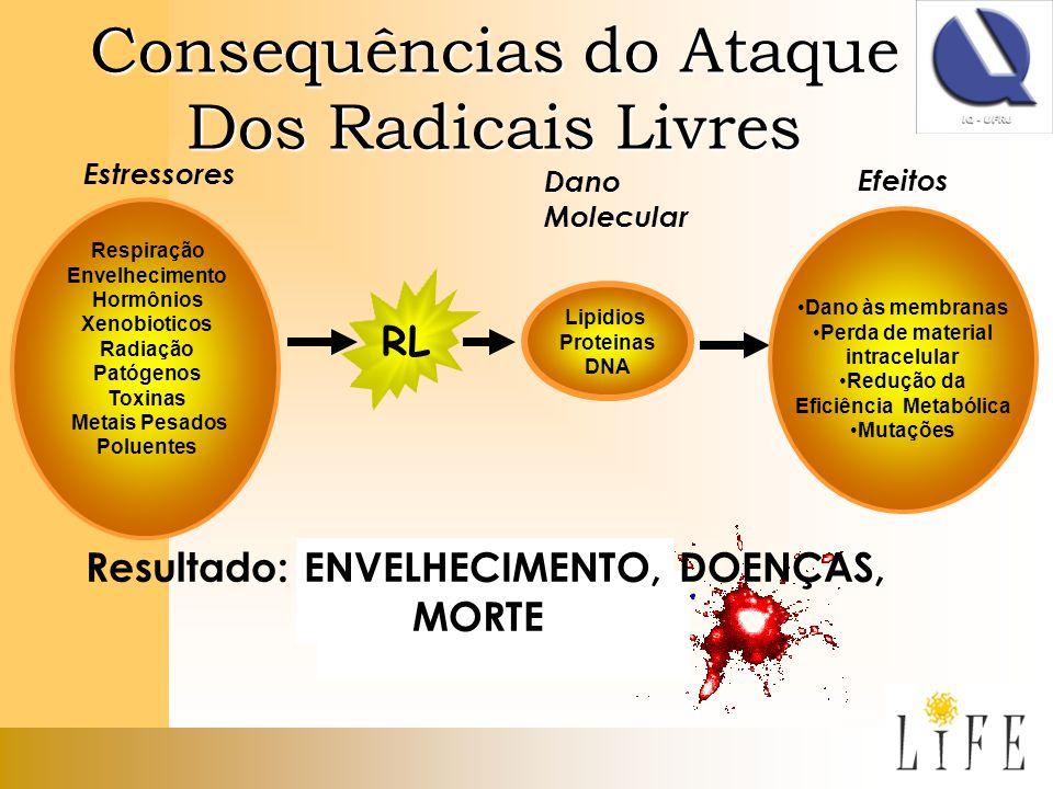 Consequências do Ataque Dos Radicais Livres