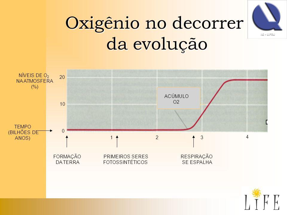 Oxigênio no decorrer da evolução NÍVEIS DE O2 NA ATMOSFERA (%) 20