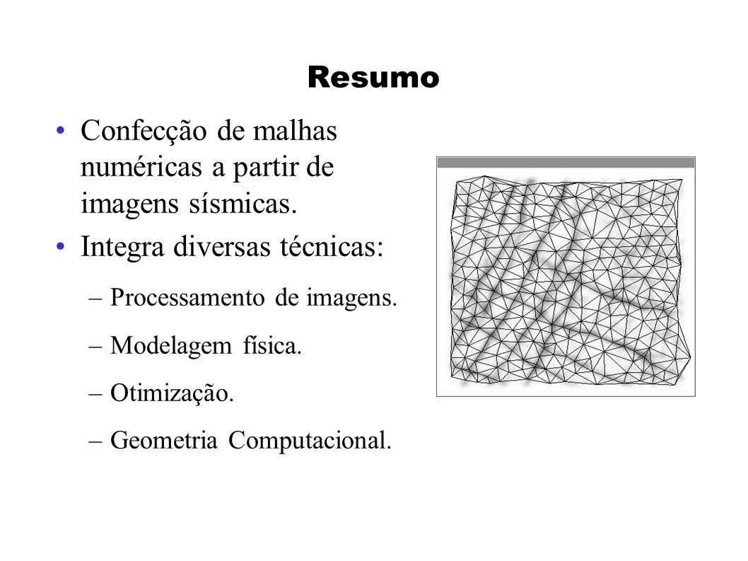 Confecção de malhas numéricas a partir de imagens sísmicas.