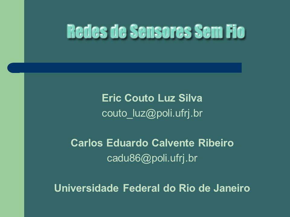 Carlos Eduardo Calvente Ribeiro Universidade Federal do Rio de Janeiro