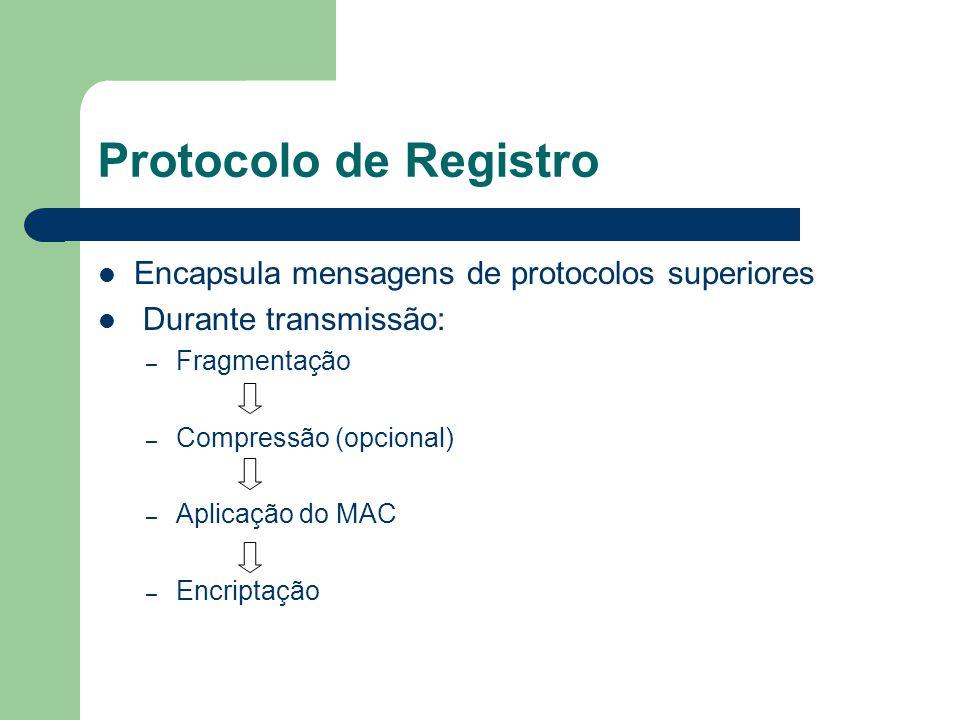 Protocolo de Registro Encapsula mensagens de protocolos superiores