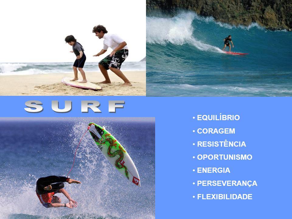 SURF EQUILÍBRIO CORAGEM RESISTÊNCIA OPORTUNISMO ENERGIA PERSEVERANÇA