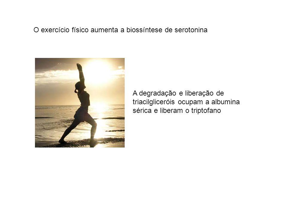 O exercício físico aumenta a biossíntese de serotonina
