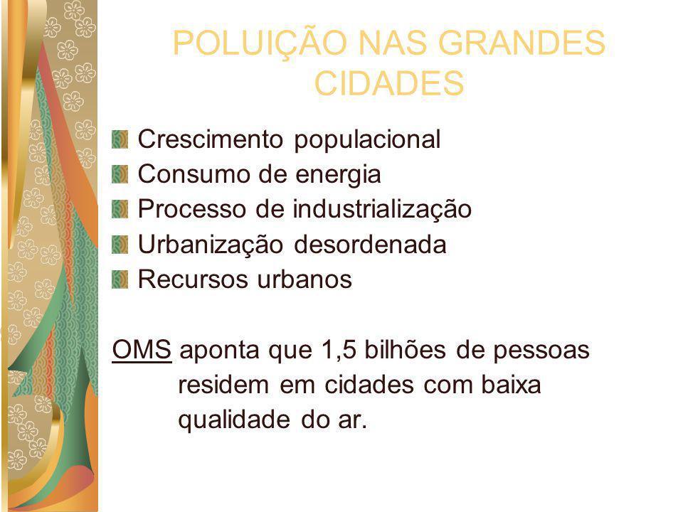 POLUIÇÃO NAS GRANDES CIDADES