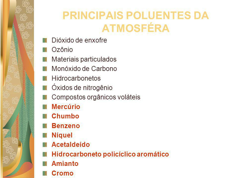 PRINCIPAIS POLUENTES DA ATMOSFÉRA