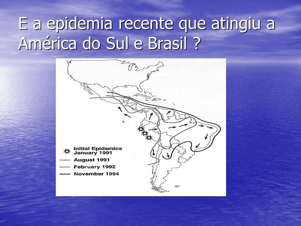 E a epidemia recente que atingiu a América do Sul e Brasil