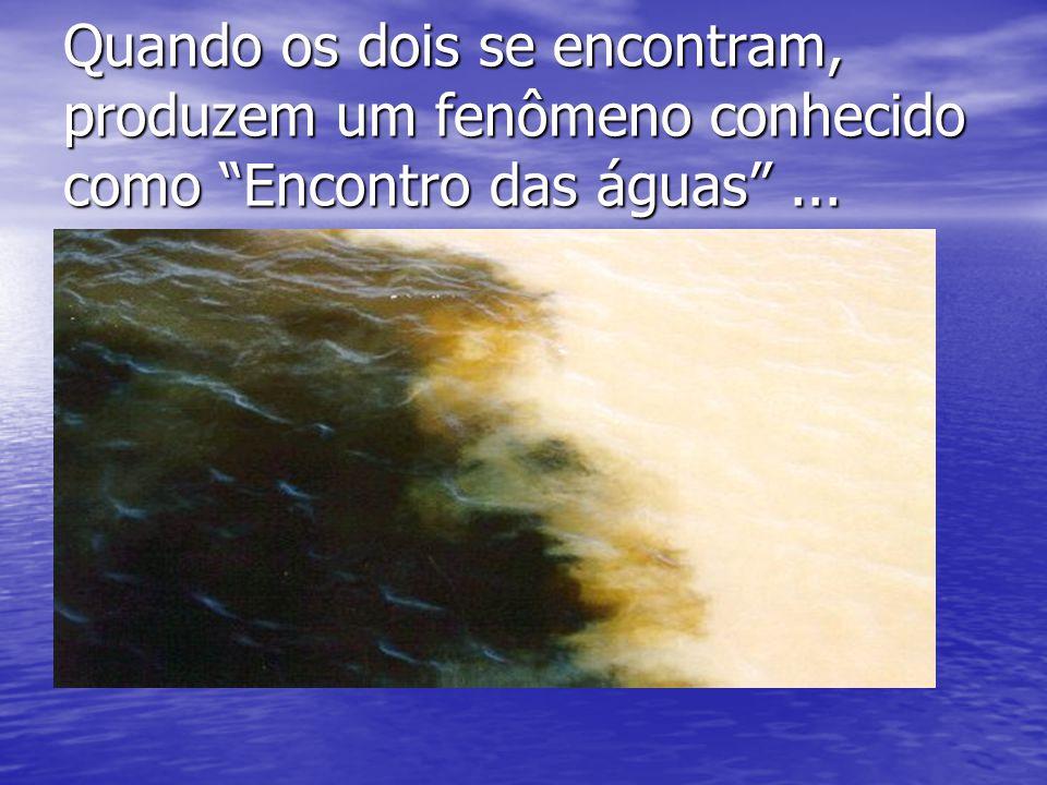 Quando os dois se encontram, produzem um fenômeno conhecido como Encontro das águas ...