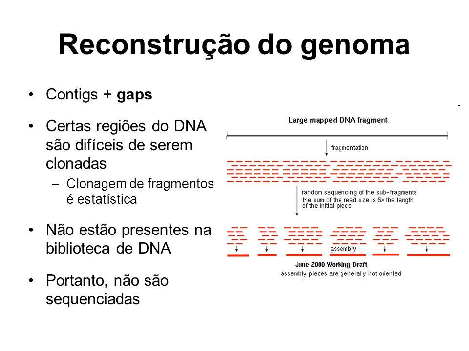 Reconstrução do genoma