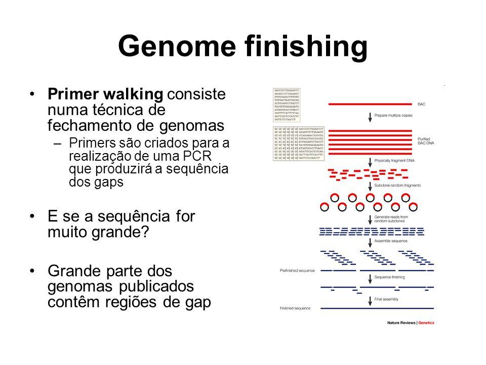 Genome finishing Primer walking consiste numa técnica de fechamento de genomas.