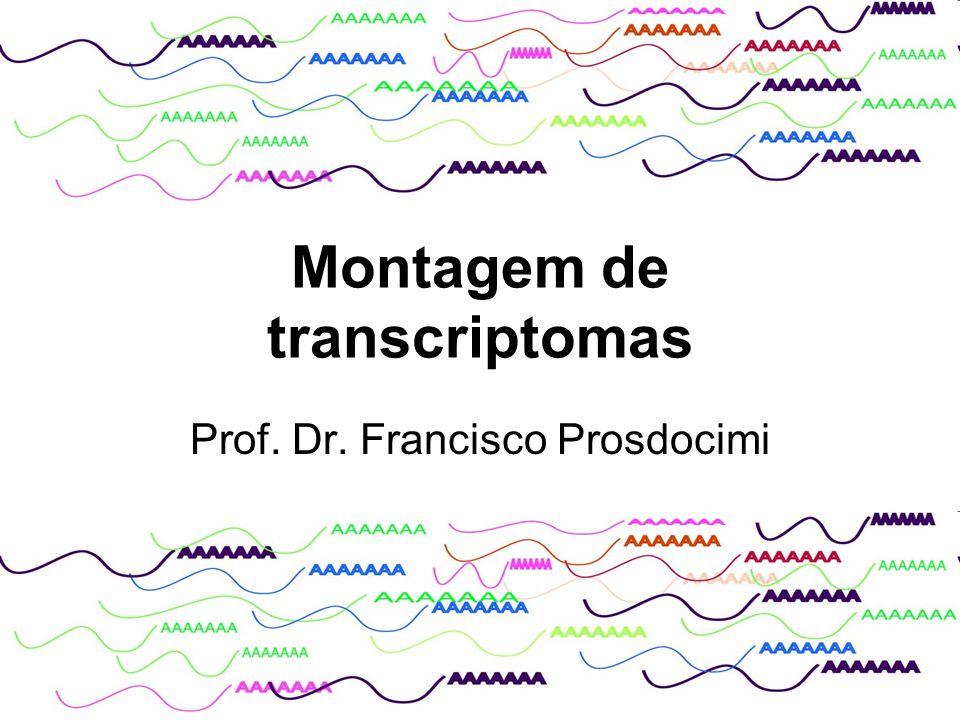 Montagem de transcriptomas