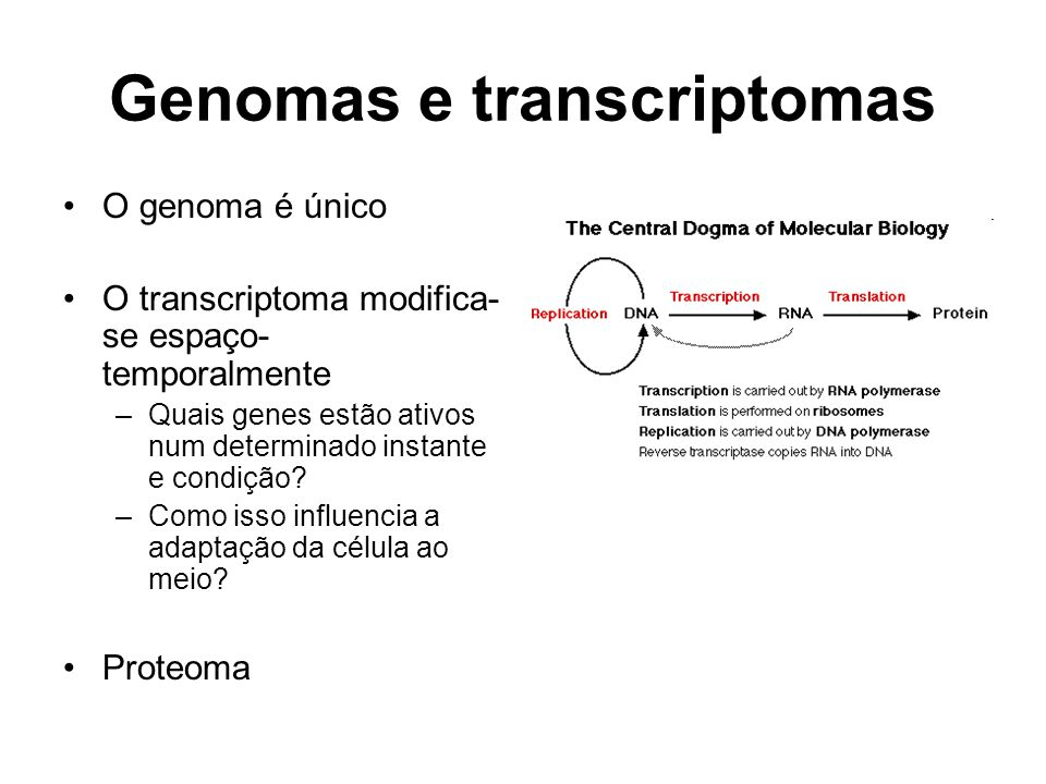 Genomas e transcriptomas