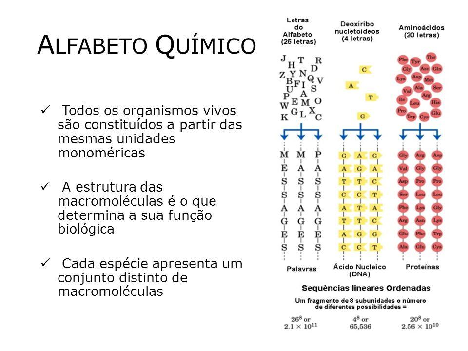 ALFABETO QUÍMICO Todos os organismos vivos são constituídos a partir das mesmas unidades monoméricas.