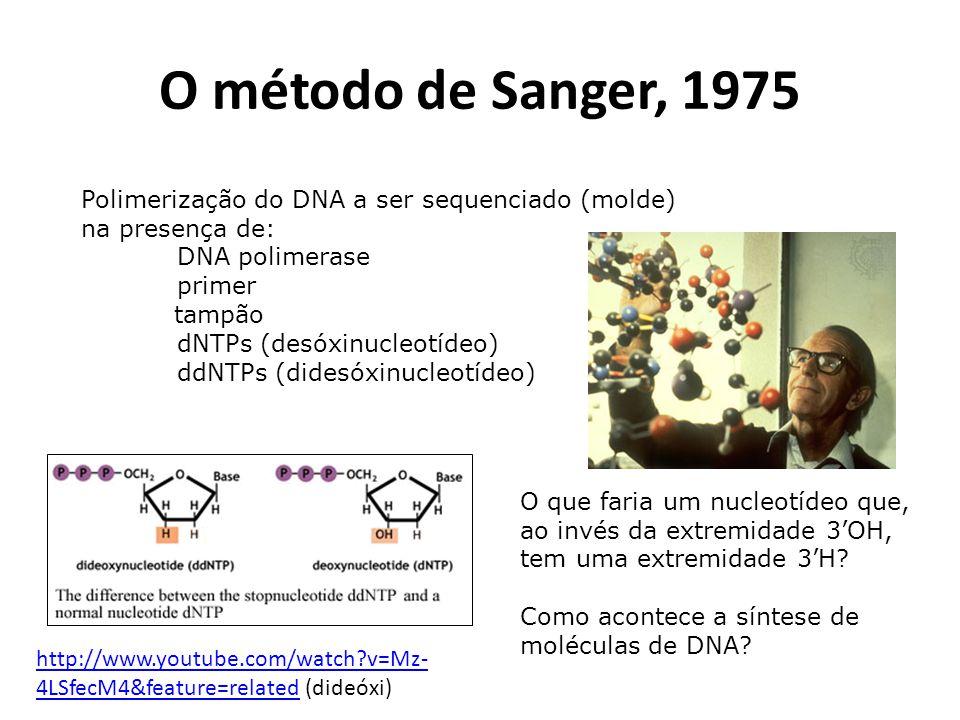 O método de Sanger, 1975 Polimerização do DNA a ser sequenciado (molde) na presença de: DNA polimerase.