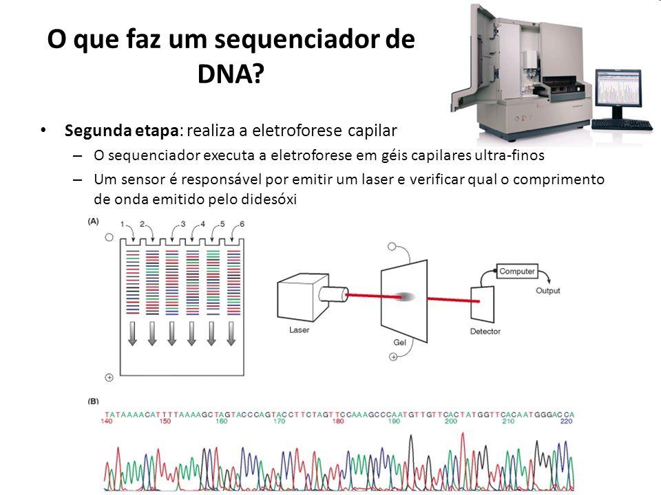 O que faz um sequenciador de DNA