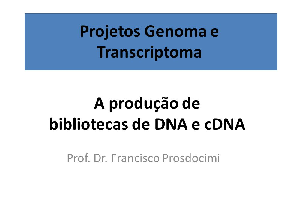 A produção de bibliotecas de DNA e cDNA