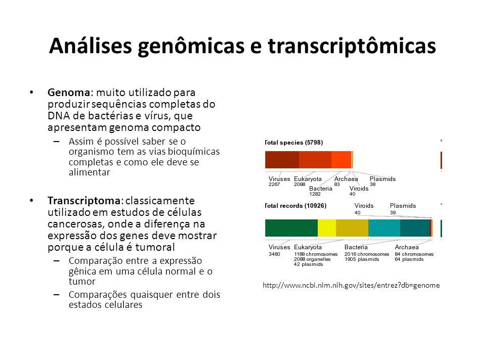 Análises genômicas e transcriptômicas