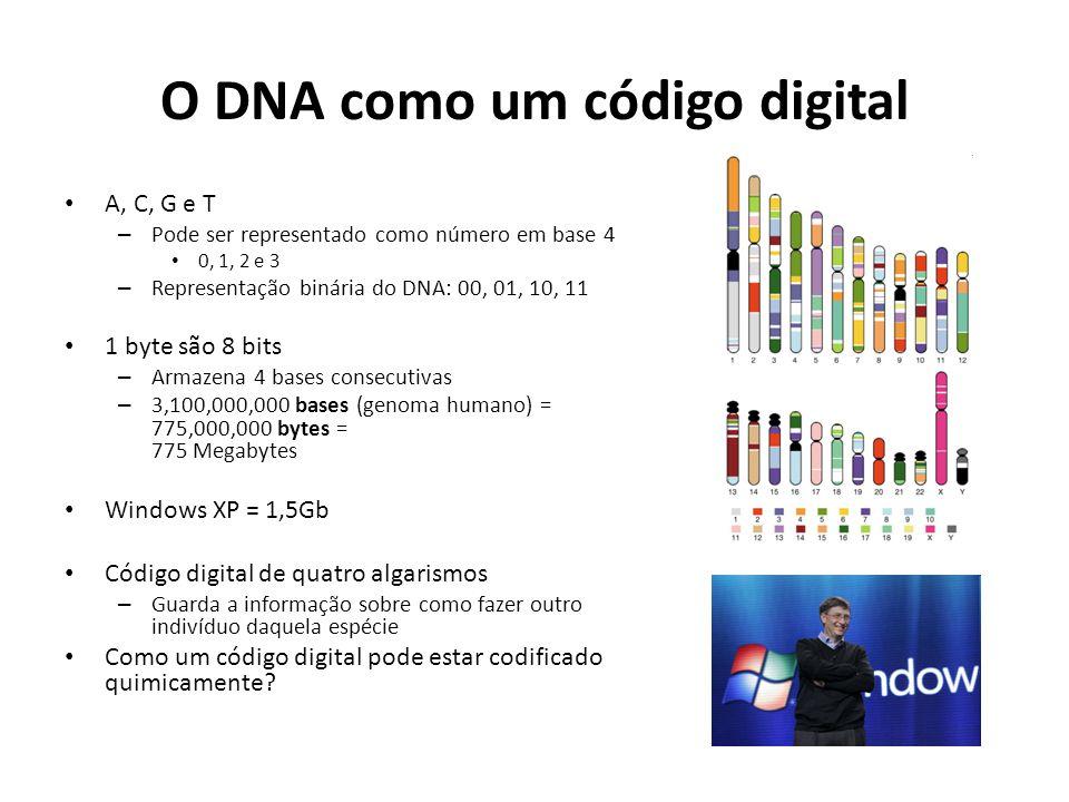 O DNA como um código digital