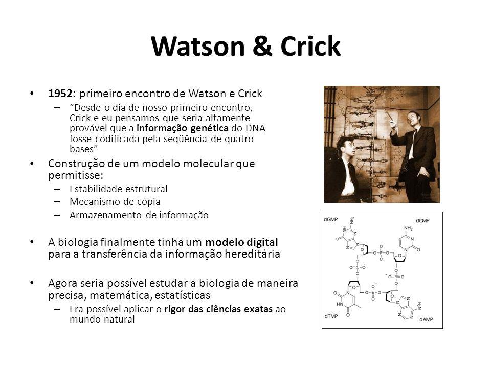 Watson & Crick 1952: primeiro encontro de Watson e Crick
