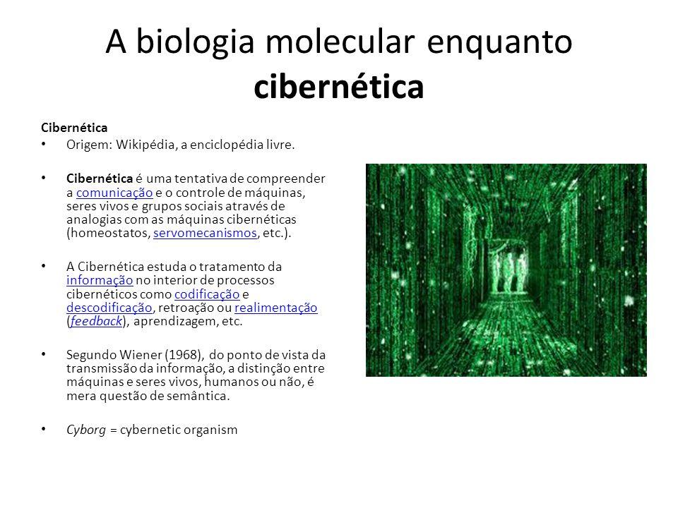 A biologia molecular enquanto cibernética