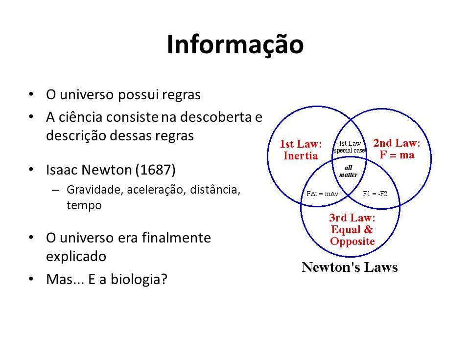 Informação O universo possui regras