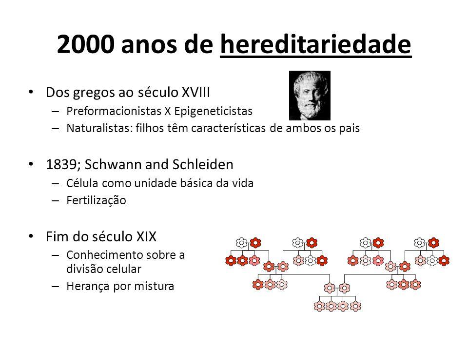 2000 anos de hereditariedade