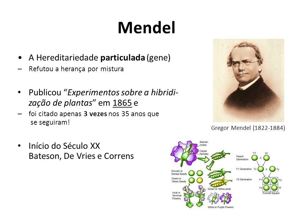 Mendel A Hereditariedade particulada (gene)