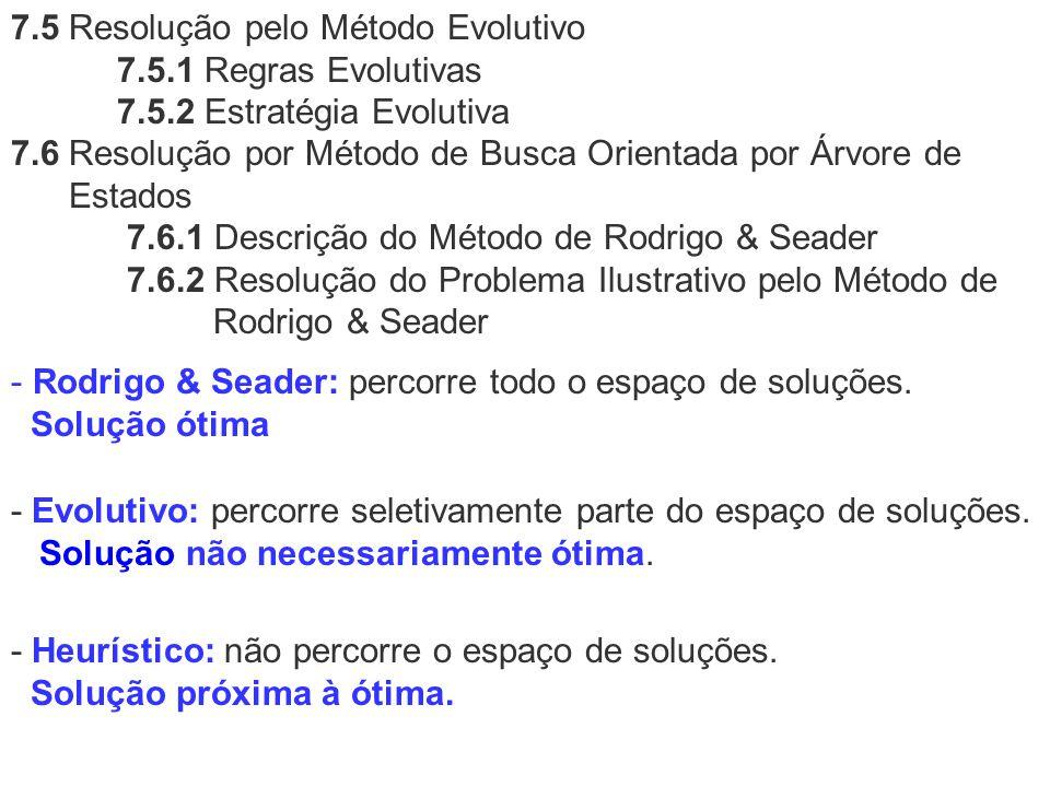 7. 5 Resolução pelo Método Evolutivo 7. 5. 1 Regras Evolutivas 7. 5