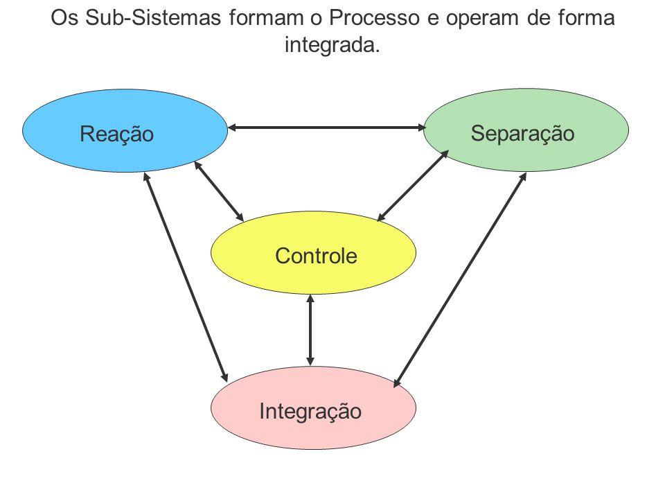 Os Sub-Sistemas formam o Processo e operam de forma integrada.