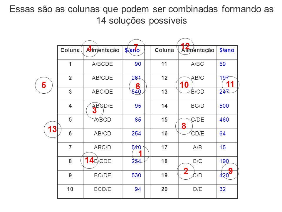 Essas são as colunas que podem ser combinadas formando as 14 soluções possíveis
