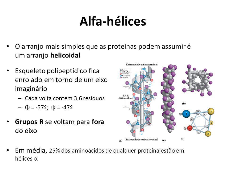 Alfa-hélices O arranjo mais simples que as proteínas podem assumir é um arranjo helicoidal.