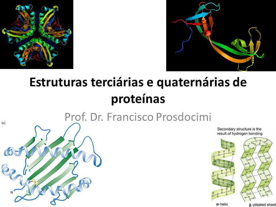 Estruturas terciárias e quaternárias de proteínas