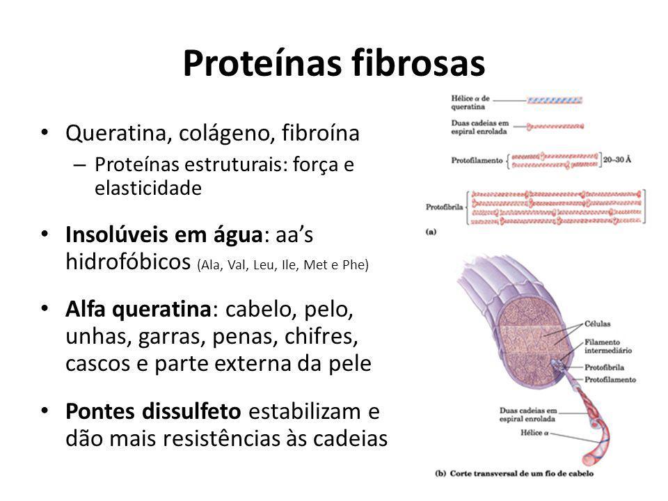 Proteínas fibrosas Queratina, colágeno, fibroína