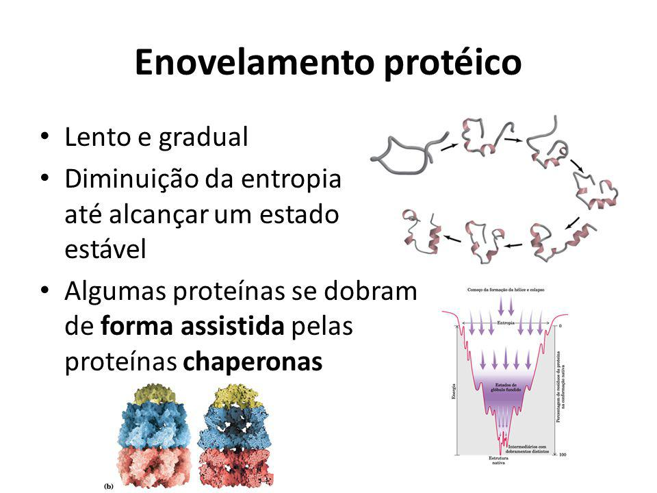 Enovelamento protéico