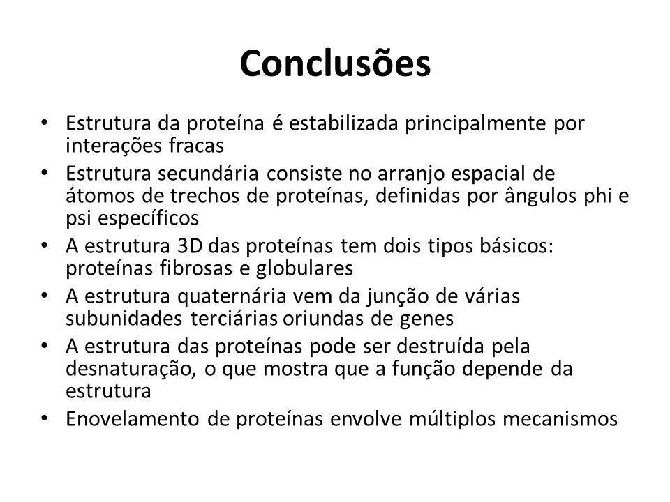 Conclusões Estrutura da proteína é estabilizada principalmente por interações fracas.