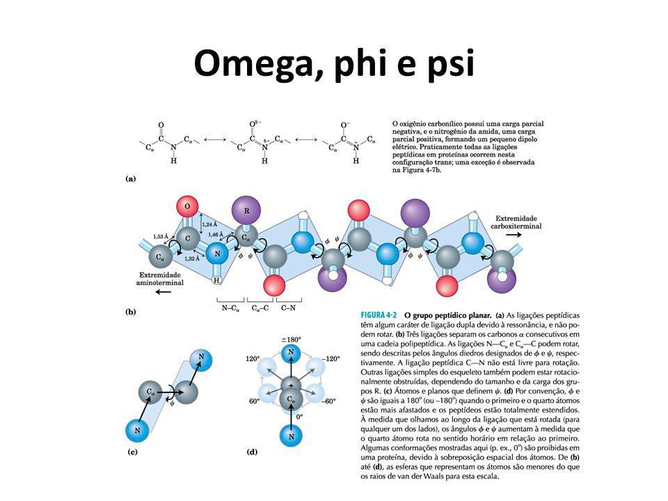 Omega, phi e psi