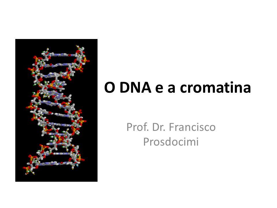 Prof. Dr. Francisco Prosdocimi