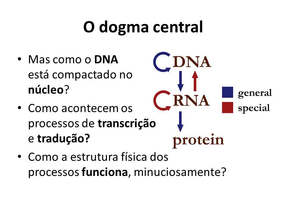 O dogma central Mas como o DNA está compactado no núcleo