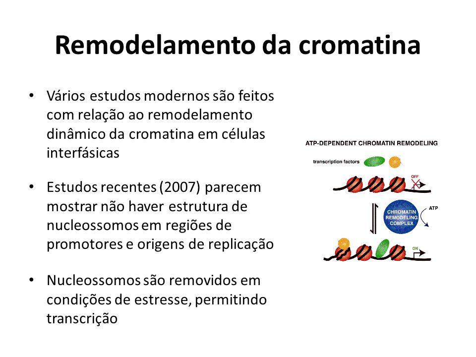 Remodelamento da cromatina