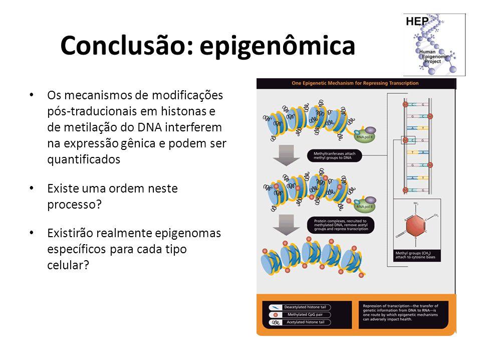 Conclusão: epigenômica