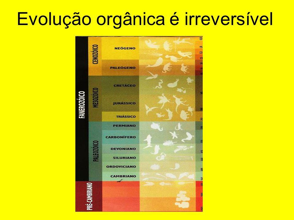 Evolução orgânica é irreversível