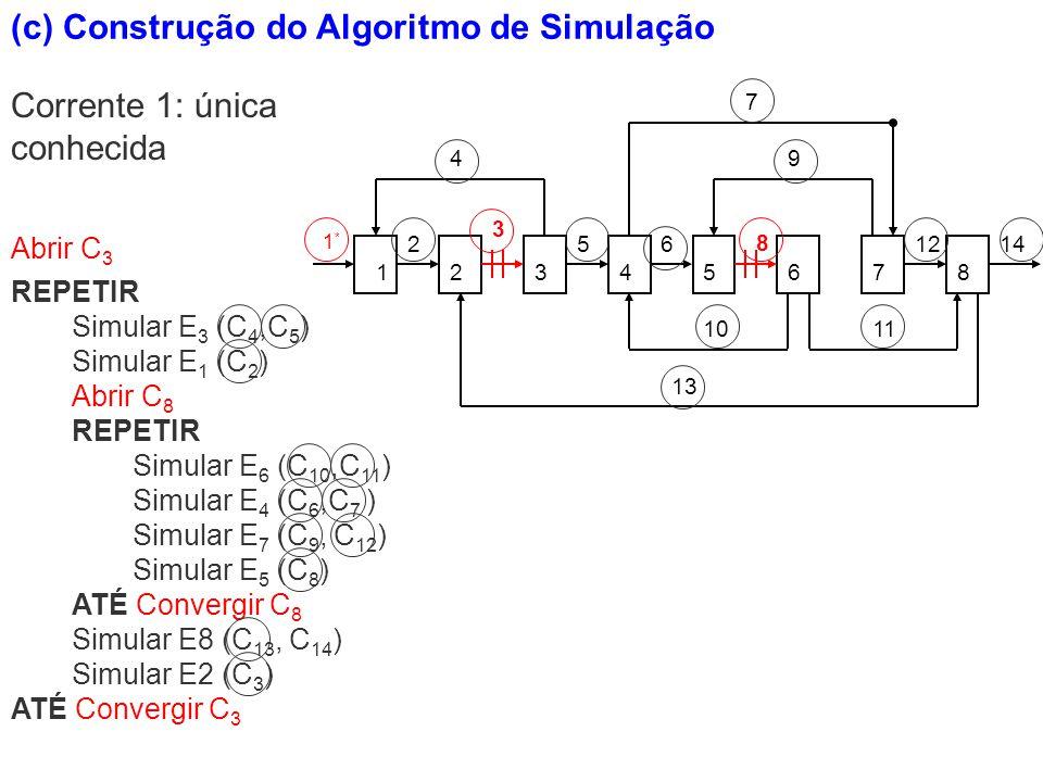 (c) Construção do Algoritmo de Simulação