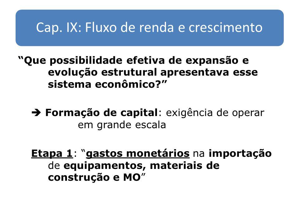 Cap. IX: Fluxo de renda e crescimento