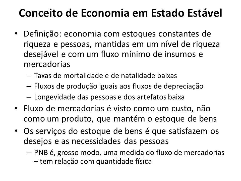 Conceito de Economia em Estado Estável