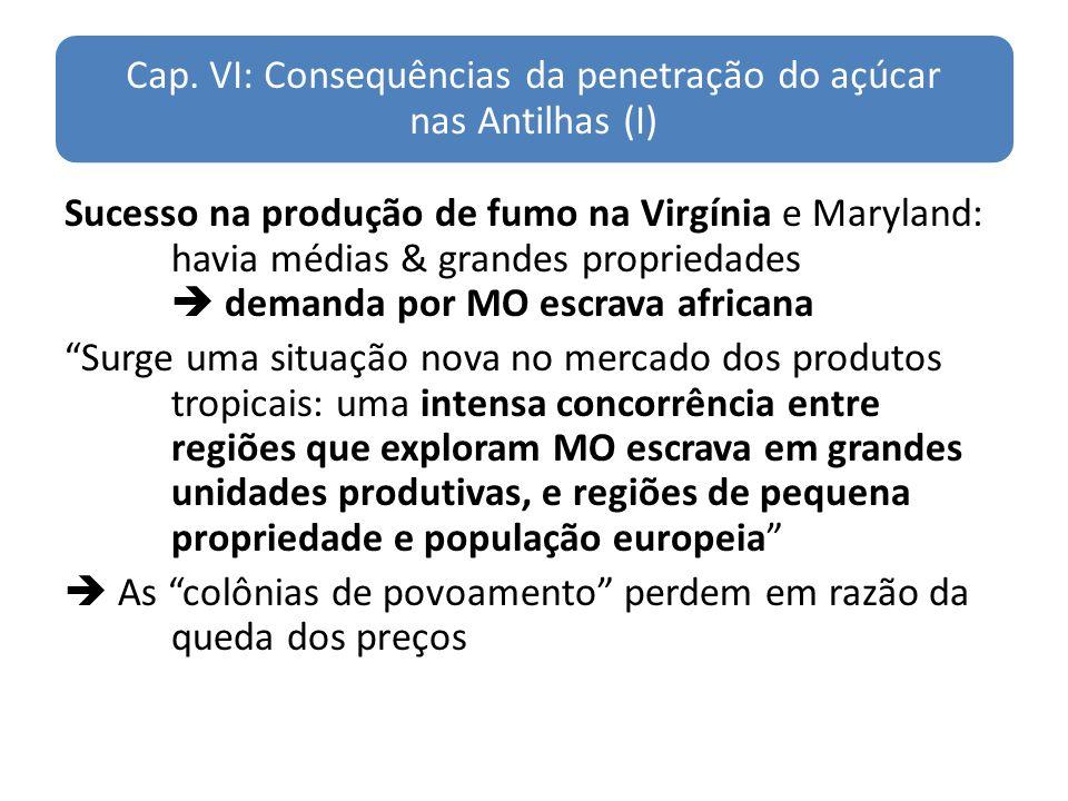 Cap. VI: Consequências da penetração do açúcar nas Antilhas (I)