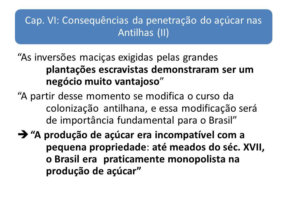 Cap. VI: Consequências da penetração do açúcar nas Antilhas (II)