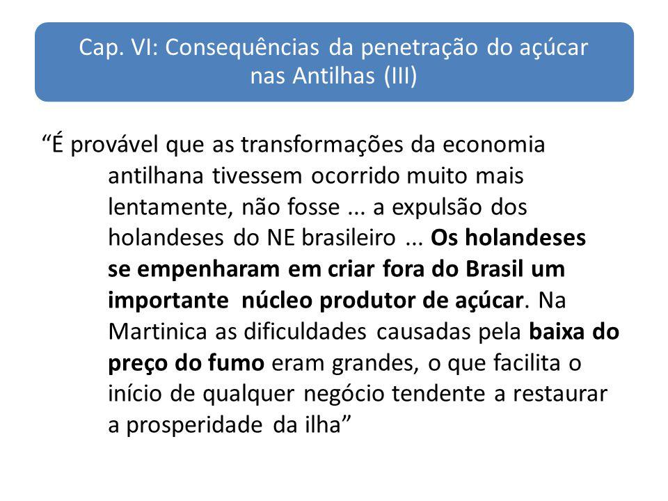 Cap. VI: Consequências da penetração do açúcar nas Antilhas (III)